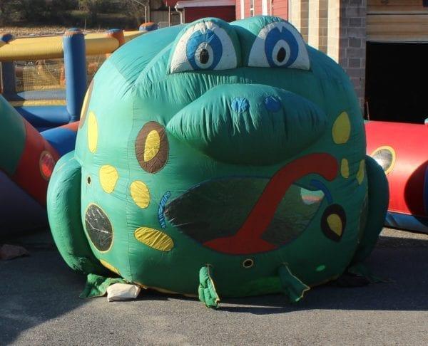 Balloon T Frog 1