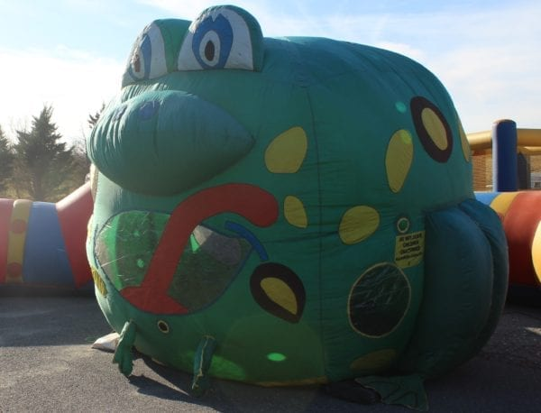 Balloon T Frog 2 scaled