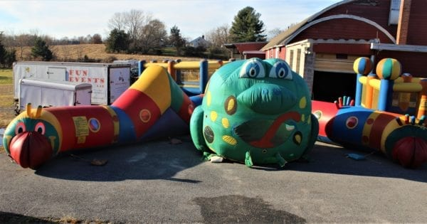 Caterpillar Frog Childrens Package 2 scaled